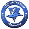 Anuncio Rodolfo 06/07/2020 TESTE 2