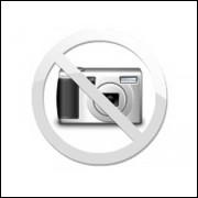 AquaSmart Zoo-p Zooplâncton Rotíferos e Copépodos Frescos Congelados